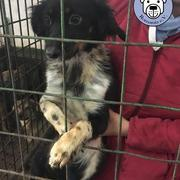 STACY - reserviert (MP)