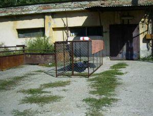 Eingang zum Tierheim