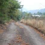 Zufahrt zum Tierheim