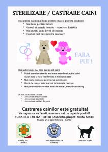 Castration_DinA5_RO