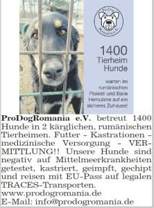 tz_münchen_130614