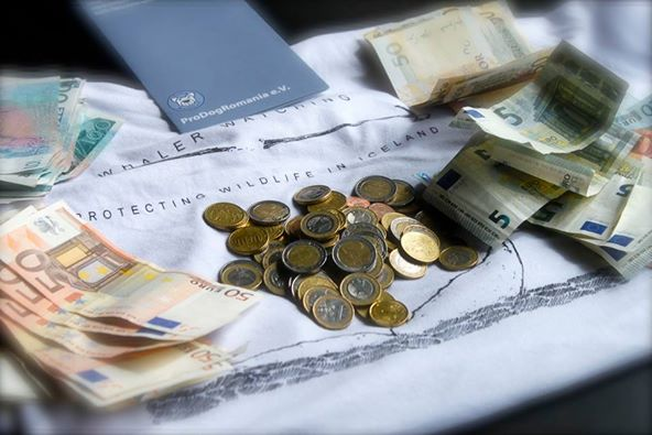 festival_geld