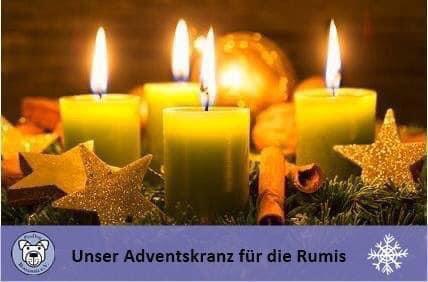 4. Adventswoche: 🕯️🕯️🕯️🕯️: ❤ für unsere Rumis