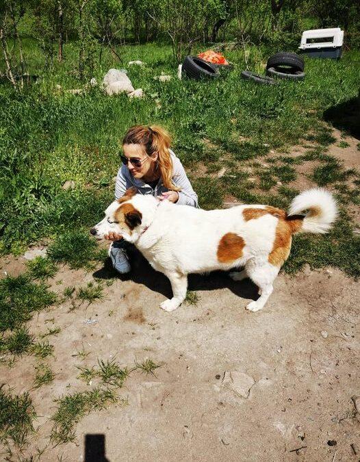 Tabasko ist heute adoptiert worden ❤